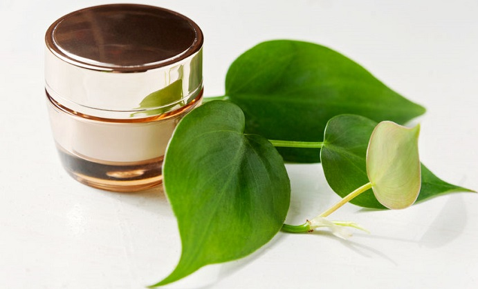 CoQ10: From Cosmetics to Maintaining Healthy Cells