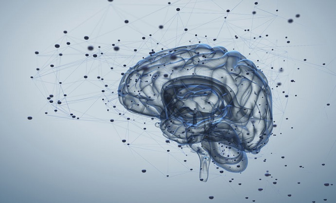 Does CoQ10 Protect Brain Cells?